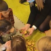 Mama Adusi opowiada Biedronkom o ziemniakach